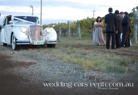 swan valley limousines
