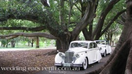jag-wedding-limos-perth-69