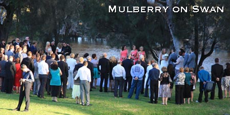 mulberry on swan wedding